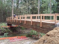 Click to view album: Karwick Nature Bridge